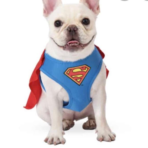 Superman Pet Harness